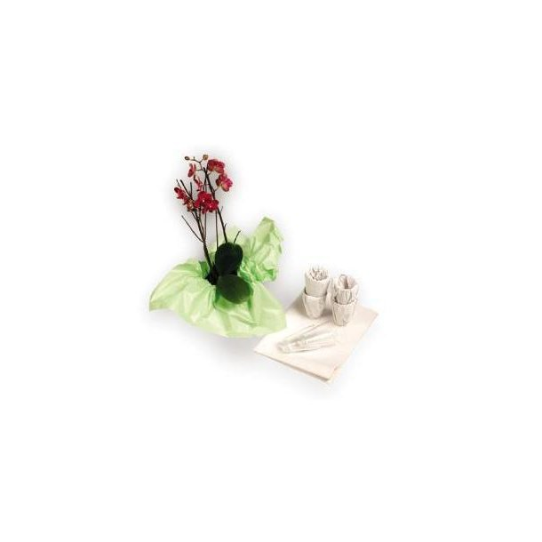 Silkepapir - 42 x 62 cm grøn 960 ark