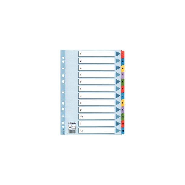 Faneblade - Esselte Mylar A4 1-12 Multicolour 10 stk